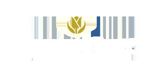 Golden-Tulip.png